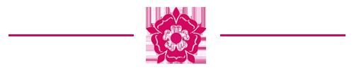 Sutton Coldfield Strip Logo Header